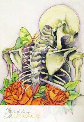peonies_skeleton_alongacre