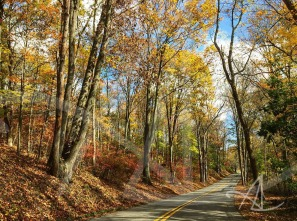 fall_backroads